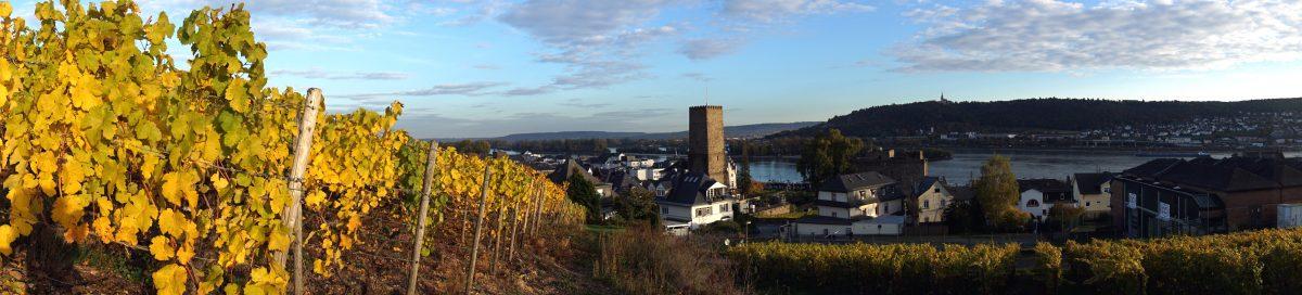 Foto panoramica di Rüdesheim, Germania.