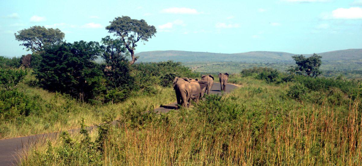 Sudafrica – Cose utili da sapere prima di partire