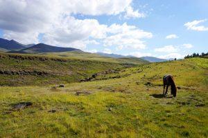 Foto di un paesaggio con un cavallo in Lesotho.