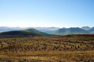 Foto di campi con cumuli di paglia ad asciugare in Lesotho.