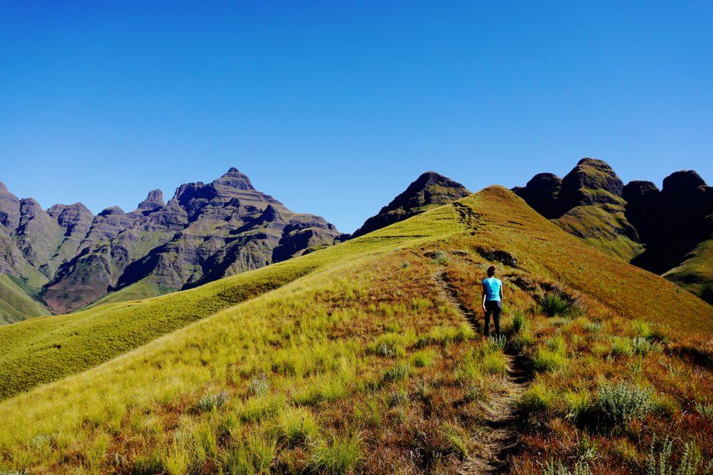 Foto di un crinale durante l'escursione per raggiungere la cima del Cathedral Peak, Sudafrica.