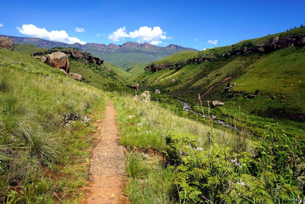 Foto di un sentiero a Giant's Castle, nelle Drakensberg in Sudafrica.