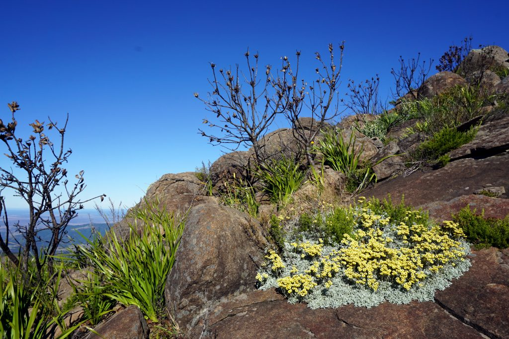 Foto del paesaggio intorno a  Hogsback, Sudafrica.