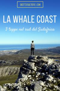 3 tappe nel sud del Sudafrica - La Whale Coast
