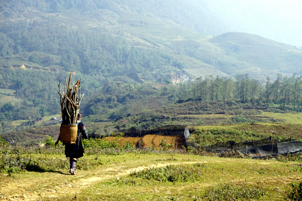 Fotografia di una donna che trasporta legna scattata durante il trekking a Sapa, Vietnam.