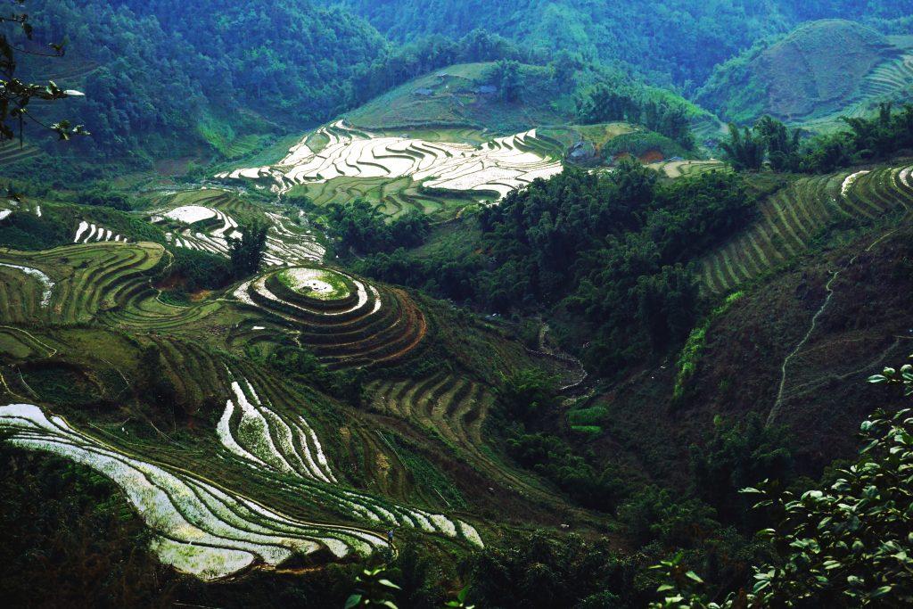 Fotografia dei terrazzamenti a Sapa, nord del Vietnam.