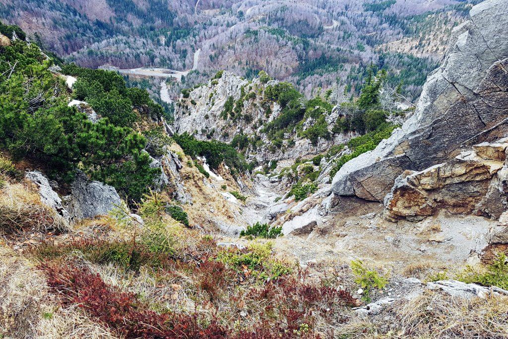 Foto del sentiero che porta alla cima della Jochberg, Baviera.